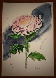 Хризантема. Акварель